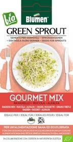 Sementi Germogli Gourmet Mix 40g Sementi germogliati Blumen 650241900000 N. figura 1