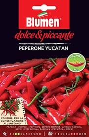 Pepe dello Yucatan Sementi di verdura Blumen 650162900000 N. figura 1
