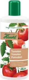 Biorga Tomaten, 1 l Flüssigdünger Hauert 658230900000 Bild Nr. 1