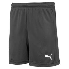LIGA Training Shorts Jr