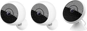 Circle 2 Multipack (2 videocamere wireless + 1 videocamera con cavo)