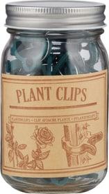Pflanzenclips im Glas Befestigung Esschert Design 630552600000 Bild Nr. 1