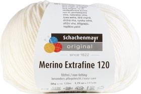 Wolle Merino Extrafine 120 Schachenmayr 665510300010 Farbe Weiss Bild Nr. 1
