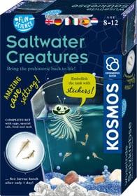 Salt Water Creatures Fun Science Kits scientifique KOSMOS 748968900000 Photo no. 1