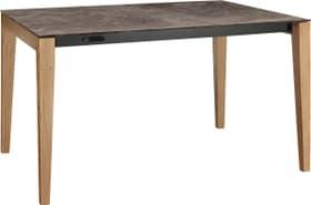 MEDICI Table 402384815008 Couleur Iron Bronze Dimensions L: 150.0 cm x P: 90.0 cm x H: 75.0 cm Photo no. 1