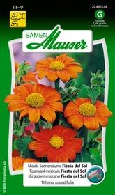 Mexik. Sonnenblume Fiesta Del Sol Blumensamen Samen Mauser 650107701000 Inhalt 50 Korn (ca. 30 Pflanzen oder 4 m²) Bild Nr. 1