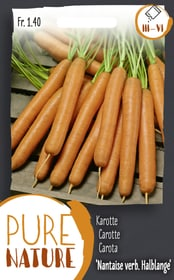 Karotte 'Nantaise verbesserte halblange' Gemüsesamen Do it + Garden 287114100000 Bild Nr. 1