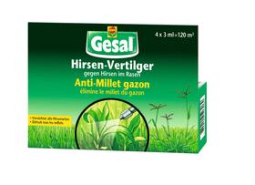 Anti-Millet gazon, 4 x 3 ml Mauvaises herbes dans le gazon Compo Gesal 658507800000 Photo no. 1