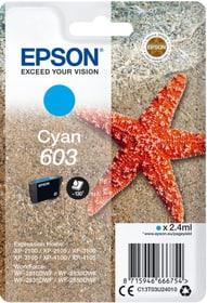 cartuccia d'inchiostro 603 cyan Cartuccia d'inchiostro Epson 785300146440 N. figura 1
