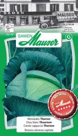CHOU BLANC THOURNEN Semences de legumes Samen Mauser 650175000000 Photo no. 1