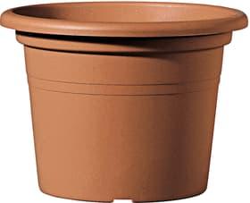 Day R Vaso Deroma 657667000000 Colore Terracotta Taglio ø: 50.0 cm x A: 34.9 cm N. figura 1