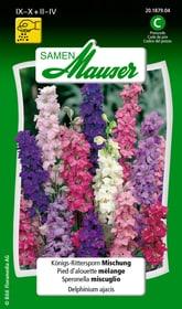 Königs-Rittersporn Mischung Blumensamen Samen Mauser 650106801000 Inhalt 1 g (ca. 150 Pflanzen oder 5 m²) Bild Nr. 1
