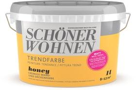 Pittura trend OPACA 1L Honey Honey 1 l Schöner Wohnen 660962300000 Colore Honey Contenuto 1.0 l N. figura 1