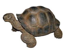 Schildkröte Deko Figur 657944600000 Bild Nr. 1