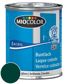 Acryl Vernice colorata lucida Verde muschio 125 ml Miocolor 660548800000 Colore Verde muschio, Verde muschio Contenuto 125.0 ml N. figura 1
