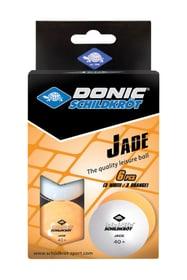 Jade Poly 40+ 6Stk. Tischtennisball Schildkröt 491643900000 Bild Nr. 1