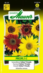 Sonnenblume Selma®-Freude Blumensamen Samen Mauser 650104104000 Inhalt 1 g (ca. 40 Pflanzen oder 3 - 4 m² ) Bild Nr. 1
