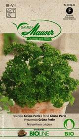 Petersilie grüne Perle Gemüsesamen Samen Mauser 650157900000 Bild Nr. 1
