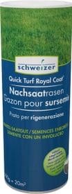 Quick - Turf Royal Coat Nachsaatrasen, 0.5 kg Rasensamen Eric Schweizer 659204400000 Bild Nr. 1