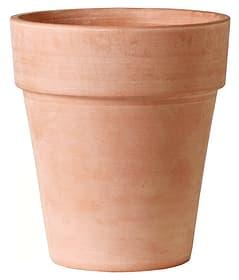Alto Vaso per fiori Deroma 658710100022 Taglio ø: 22.0 cm x A: 24.0 cm Colore Terracotta N. figura 1
