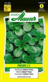 Nüsslisalat Selma®-Vera Gemüsesamen Samen Mauser 650112801000 Inhalt 2.5 g (ca. 2 m² ) Bild Nr. 1