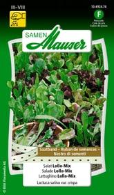 Ruban de semences Salade Lollo-Mix Semences de legumes Samen Mauser 650114406000 Contenu 3 x 2.5 m de ruban de graines pour für 1.5 - 2 m² Photo no. 1