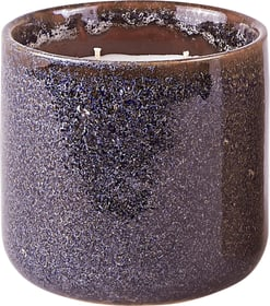 DORIT APRICOT & PEACH TEA Candela profumata 440722800000 N. figura 1