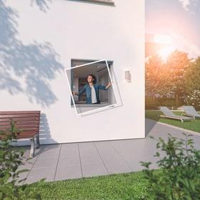 Fensterrahmen RHINO Protezione contro gli insetti Windhager 631297800000 N. figura 1