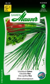 Ciboulette fine Semences d'herbes arom. Samen Mauser 650114801000 Contenu 1 g (env. 1 - 2 m²) Photo no. 1