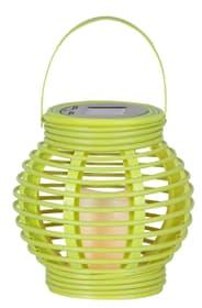 Lampe solaire LED lantern verte