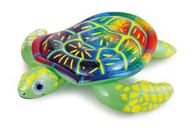 Tartaruga cavalcabile, gonfiabile