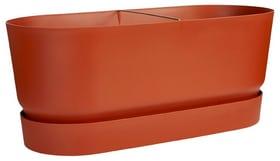 Greenville terrace trough auf Rollen Balkonkasten Elho 657791500000 Farbe Terracotta Grösse L: 78.0 cm x B: 35.0 cm x H: 33.5 cm Bild Nr. 1