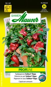 Peperoni Selma®-Topa Gemüsesamen Samen Mauser 650113003000 Inhalt 10 Korn (ca. 8 Pflanzen) Bild Nr. 1