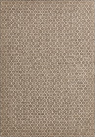 LEROIN Tapis 412018416014 Couleur nature Dimensions L: 160.0 cm x P: 230.0 cm Photo no. 1