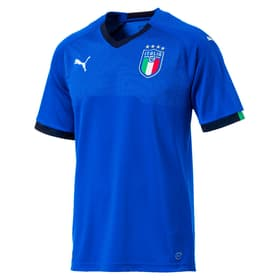 FIGC Italia Home Shirt Replica
