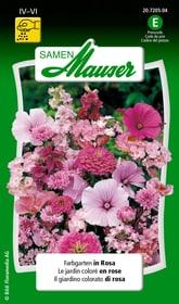 Farbgarten in Rosa Blumensamen Samen Mauser 650103702000 Inhalt 3 g (ca. 100 - 150 Pflanzen oder 3 - 4 m² ) Bild Nr. 1