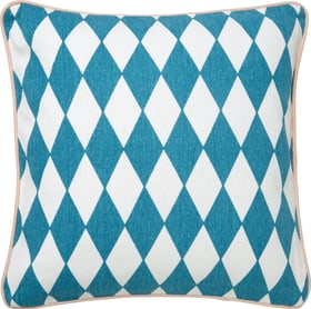 ANDER Coussin 450748300000 Photo no. 1