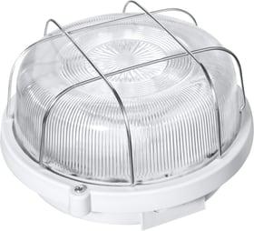 Iso luminaire rond Lampe de travail Steffen 613058400000 Photo no. 1