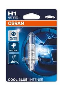Cool Blue Intense H1 Ampoule Osram 620474300000 Photo no. 1