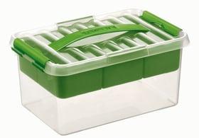 Multibox 6L, avec insert Boîte de rangement avec insert 603759500000 Photo no. 1