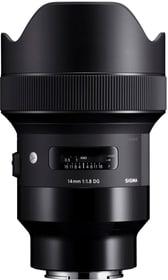 14mm F1.8 DG HSM Art Sony Objectif Sigma 793434500000 Photo no. 1