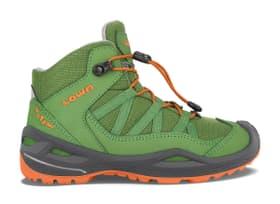 Robin GTX Qc Chaussures polyvalentes pour enfant Lowa 465528039060 Taille 39 Couleur vert Photo no. 1