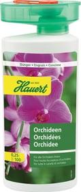 Orchideen, 0,25 l Flüssigdünger Hauert 658205800000 Bild Nr. 1
