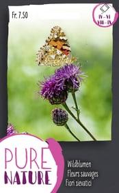 Fleurs sauvages pour papillons ab. 1.5g Semences de fleurs Do it + Garden 287300300000 Photo no. 1