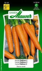 Karotte Flakkeer 2 Gemüsesamen Samen Mauser 650110901000 Inhalt 5 g (ca. 300 - 500 Pflanzen oder 5 - 8 m²) Bild Nr. 1