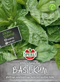 Basilic Italian Star Semences d'herbes arom. Sperli 650199700000 Photo no. 1