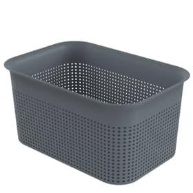 BRISEN Panier de stockage 4.5l, Plastique (PP) sans BPA, anthracite Rotho 674131200000 Photo no. 1