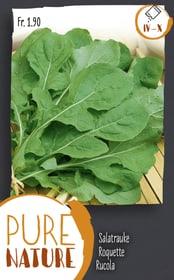 Rucola 5g Sementi di verdura Do it + Garden 287111800000 N. figura 1