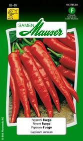 Peperoni Fuego Gemüsesamen Samen Mauser 650113001000 Inhalt 0.2 g (ca. 15 - 20 Pflanzen oder 3 - 7 m² ) Bild Nr. 1