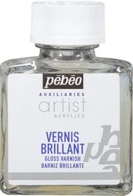 PÉBÉO Auxiliaries Artist Acrylics Gloss Varnish 75ml Pebeo 663509910000 Sujet Acrylic Glanzlack Bild Nr. 1